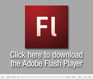 Bitte installieren Sie den letzten Flash Player
